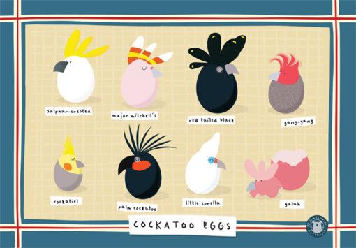 Tea towel Cockatoo Eggs